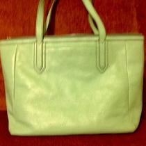 Fossil Sea Glass Green Sydney Large Pebble Leather Purse Tote Double Handle Photo
