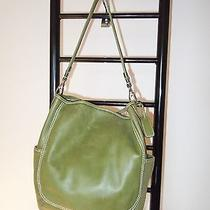 Fossil Shade of Green  Leather  Hobo  Bag  Photo