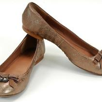Fossil Shoe Sassy Charm Golden Leather Flats 7.5m Crystal Owl & Bow 15456 Photo