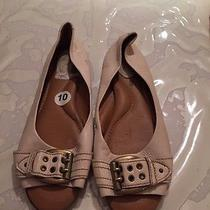 Fossil Shoes Photo