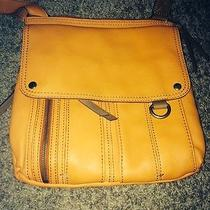 Fossil Shoulder Bag Photo