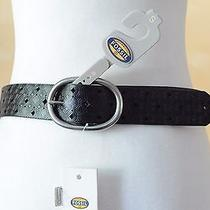 Fossil Signature Perforated Leather Belt Photo