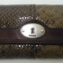 Fossil Snake Embossed Leather Leather Wallet  Photo