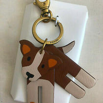 Fossil Sofia Dog Key Fob/ Ring 4 Movable Parts Browns White 100% Polyurethan  Photo