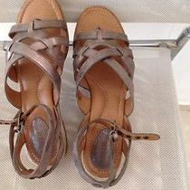 Fossil Sofia Lthr Women Thong Ankle Strap Flat Leather Sandals Size 8 Antique Go Photo