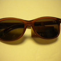 Fossil  Sun Glasses Hamiltion in Medium Brown    Nwt Photo