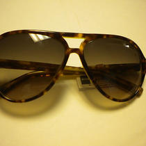 Fossil  Sun Glasses Maddox 3 in Torteshell  Nwt Photo