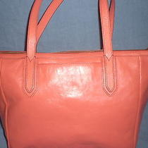 Fossil Sydney  Totes Photo