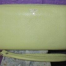 Fossil Sydney Wristlet Zip Wallet Clutch Bag Light Green Pebbled Leather Photo