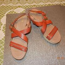 Fossil -Sz 10- Brown Leather Strappy Solid Wood 3