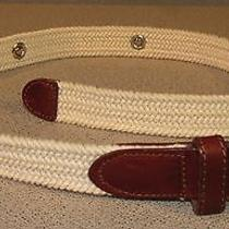 Fossil Tan Braided Canvas Casual Women's Belt Size Small Sunflower Accents Photo