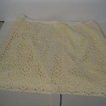 Fossil White Lace Skirt Photo