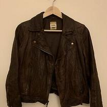 Fossil Women Leather Jacket - Brown Size Xs Photo