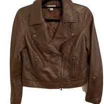 Fossil Women Motorcycle Leather Jacket Brown Size M Photo