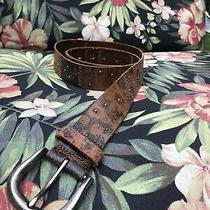 Fossil Women's Large Size Brown Tooled Leather Belt Photo