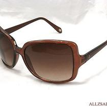 Fossil Women's Oversized Square Sunglasses Brown / Gradient Brown 606 Photo