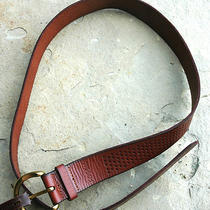 Fossil Women's Perf C Buckle Fir Belt Genuine Leather Brown Sz M 36 Nwt Photo