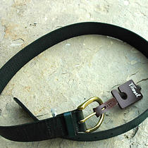 Fossil Women's Perf C Buckle Fir Belt Genuine Leather Green Sz M 36 Nwt Photo