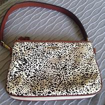 Fossil Women's Purse Photo