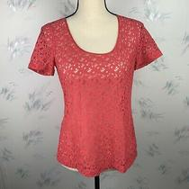 Fossil Womens Top Solid Pink Short Sleeve Blouse Lace Sheer Scoop Neck Size Xs Photo