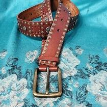 Fossil Womens Belt Brown Studded Genuine Tooled Leather Gold Tone Buckle Size M Photo
