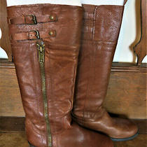 Franco Sarto Womens Poet Riding Boots Knee High Buckle Brown Leather Size 8.5 Photo