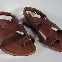 Franco Sarto Women's Sandals 8m  Brown Toe Strap Georgie Chocolate New Nwb Photo
