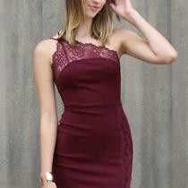 Free People Dress Premonitions Bodycon Bloom Wine Stretch Lace Size Small Photo