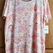 Free People Tourist Printed Tee Blush Size L Nwt Photo