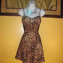 Free Shipping Nwt  Bebe 2b Leopard Corset Mesh Dress Size S Photo