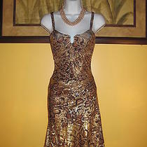 Free Shipping Nwt  Bebe Snake Print Corset Dress Size S Photo