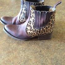 Freebird Boots Photo