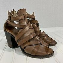 Freebird by Steven Claw Womens Brown Leather Strappy Heel Sandals Size 9 Photo
