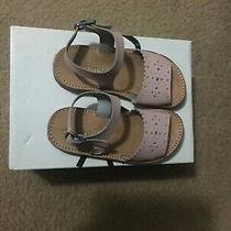 Freshly Picked Sandal Laguna Blush Size9 Photo
