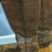 Frye Boots Photo