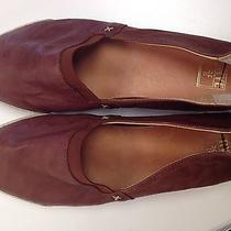 Frye Brown Flat (Sz8)  Photo