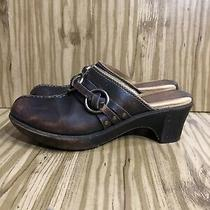 Frye Brown Leather Mules Clogs Womens Size 7m Distressed Look Buckle Photo