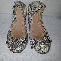 Frye Carson Collapsible Ballet Flats Leather Silver Mult Shoes Size 7.5 Photo