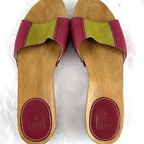 Frye Ellie Slide Womens Sandals Wooden Slides Flats Sz 9m Pink Green  Photo