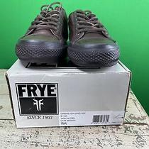 Frye Greene Low Lace 9m Photo