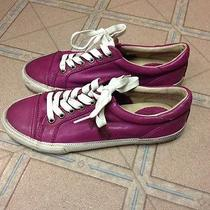 Frye Kira Low Top Magenta Size 6.5 Brand New  Photo