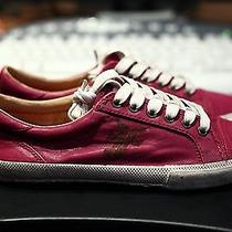 Frye Kira Low Top Size 8 Magenta New Photo