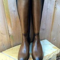 Frye Lindsay Gore Tall Fawn Riding Boot Size 8 Nib Photo