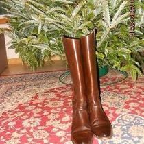 Frye Lindsay Plate Riding  Boots  9m  Dark Brown  Photo