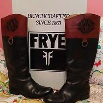 Frye Riding Boots New With Box  Photo