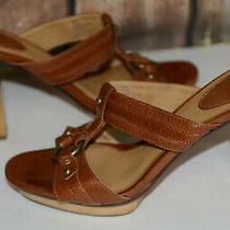 Frye Size 8.5 M Gerry Slides Sandals Leather Block Heel Wood Platform Brown Logo Photo