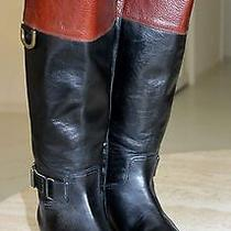 Frye Tall Boots / Equestrian / Riding / Two Tone / Woman Sz 7 M Photo