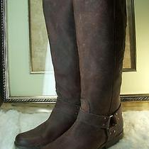 Frye Women's Antiqued Phillip Harness Tall Boot Size 8.5 B Photo