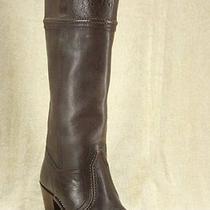 Frye Womens Jane 14l Stitch Riding Boots Size 6 Dark Brown New Tall Cuff Photo