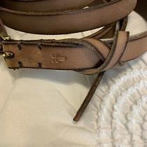 Frye Womens Size Xl Brown Leather Belt Nwt Msrp 68 Photo